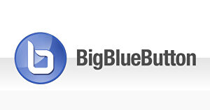 I will install BigBlueButton with SSL, Greenlight, HTML5 support and do branding with your logo