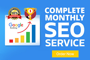 I will Provide Monthly SEO Service
