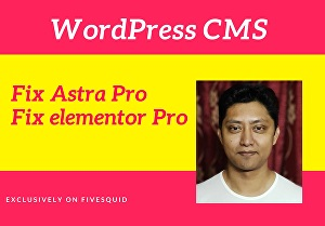 I will fix elementor pro  and astra pro perfectly