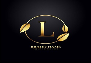 I will Provide Awesome  Design Name Logo