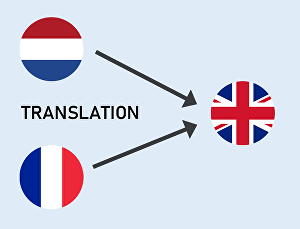 I will translate any text from French or Dutch into English