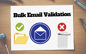 I will do bulk email verification, email validation, bulk email list cleaning for you