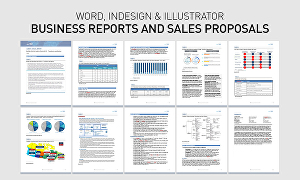 I will design reports, proposals and company profiles