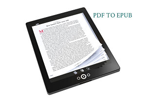 I will convert your pdf to epub