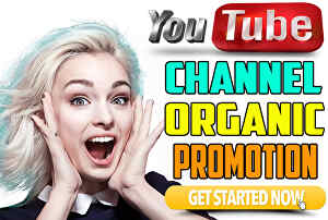 I will do youtube video promotion through Google ads