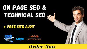 I will do onpage optimization and technical seo of wordpress website