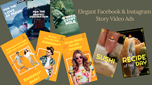 I will create elegant Facebook and Instagram story video ads
