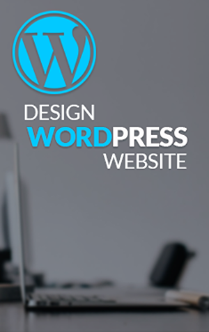 I will develop a professional WordPress website design