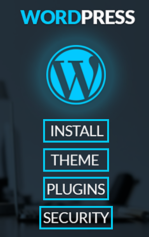 I will install wordpress and setup wordpress theme