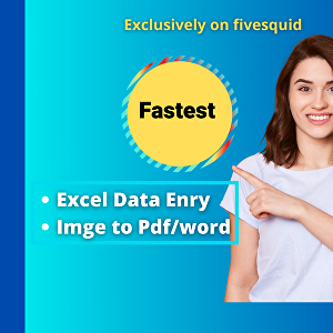 I will do fastest excel data entry professionally
