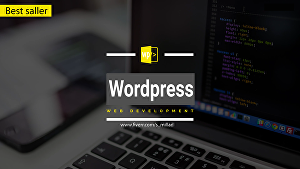 I will create any responsive and professional wordpress website for you