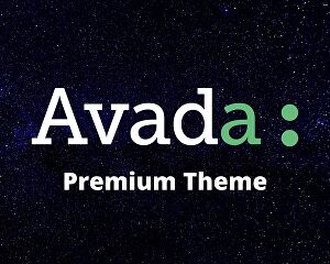 I will customize Avada theme to create WordPress websites