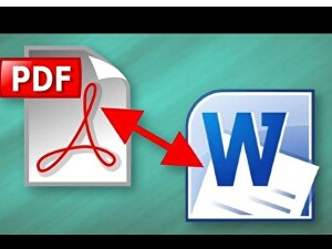 I will covert your PDF to word