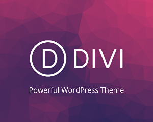 I will customize Divi theme to build professional WordPress websites