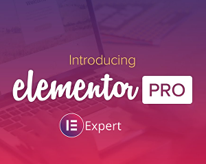 I will be your Elementor Pro expert