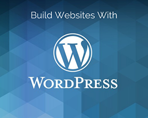 I will build a responsive mobile friendly WordPress website design