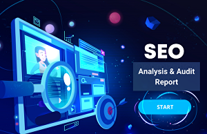I will do in depth website seo analysis and audit report