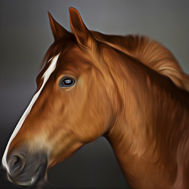 draw realistic art portrait of your pet or any animals