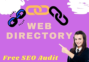 I will do 300 high-quality directory submission manually