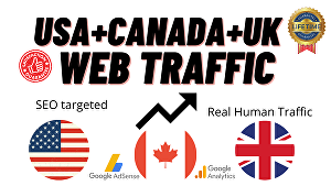 I will provide real human USA+Canada+U.K high-quality web traffic