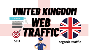 I will provide niche-targeted United Kingdom real human web traffic to your website, store
