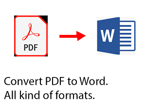I will Convert PDF to Word up to 500 word