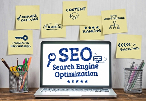 I will do website SEO with high quality and authority backlinks for google ranking