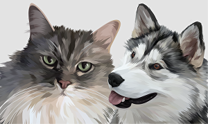 I will draw high quality vector of your pet