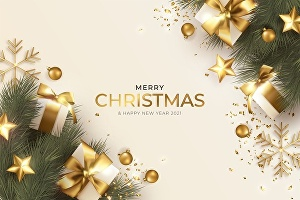 I will design Christmas party Banner, Christmas Card or New Year Card Design