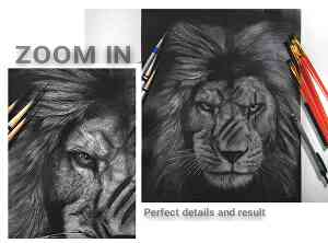 I will draw a detailed portrait of your pet using a pencil