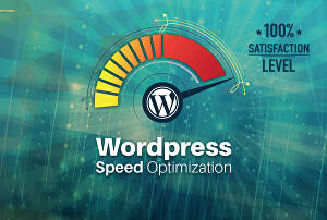 I will speed up optimization wordpress website