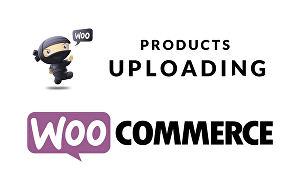 I will add 100 products to your WordPress woocommerce website