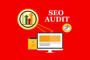 I will provide website seo audit report
