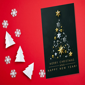 I will design beautiful merry Christmas card, invitation, and party poster