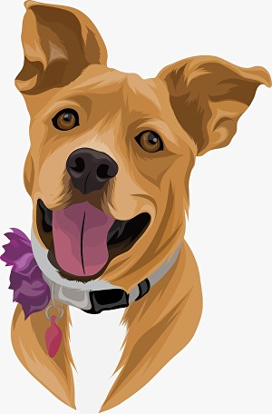 I will draw high quality vectors for your pet or any animal
