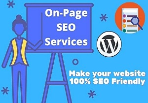 I will do on-page SEO and technical SEO  for your WordPress website