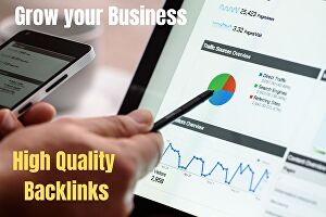 I will provide white hat SEO backlinks services for google top ranking