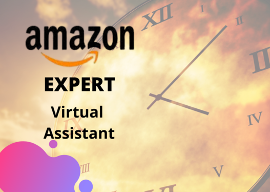 be your virtual assistant amazon and amazon FBA virtual assistant