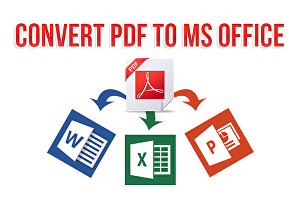 I will convert PDF to word, excel, power point or jpg