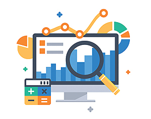I will provide website performance report