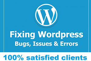 I will setup, fix, install or customize your wordpress website
