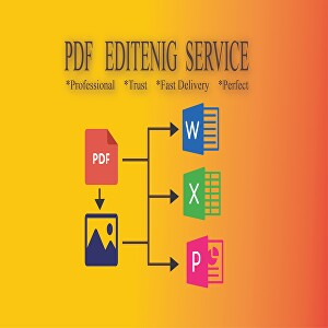 I will Professionally Edit your PDF file