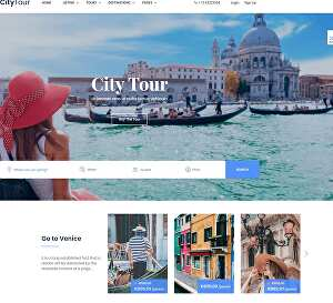 I will create travel, tour booking website in wordpress