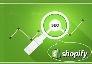 I will do product SEO in shopify store to increase sales and traffic