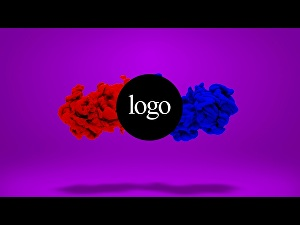 I will  Make Logo Animation Intro