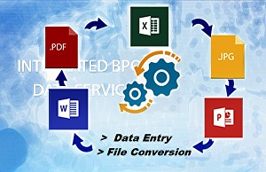 I will do MS Word, Excel, Access or Powerpoint Presentation & Data Entry Accurately, Precisel