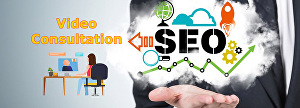 I will do SEO Video Consultation