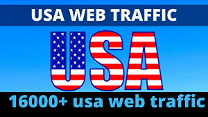 I will give 16000 usa targeted website traffic fast delivery in 20 days