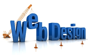 I will do professional WordPress e-commerce website design or development