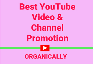 I will do best Organic YouTube Video and Channel Promotion